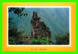 THE THREE GORGES, CHINE - SHENNU PEAK- DIMENSION 22 X 16 Cm - - Chine