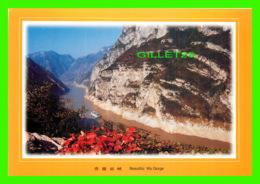 THE THREE GORGES, CHINE - BEAUTIFUL WU GORGE - DIMENSION 22 X 16 Cm - - Chine