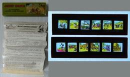 Walt Disney - Plaques De Verre - Lanterne Magique - Mickey Crusoe - Walt Disney - 12 Coloured Lantern Slide Pictures - Glasdias