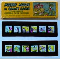 Walt Disney - Plaques De Verre - Lanterne Magique - Mickey Mouse In Giant Land - 12 Coloured Lantern Slide Pictures - Glasdias
