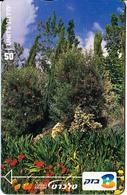 ISRAEL - The Botanical Gardens, CN : 206G, 10/02, Used - Paysages