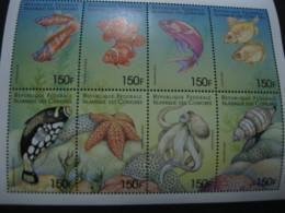 Comoros  1999 Marine Life  Sheetlet  SCOTT No.887 I201807 - Comoros