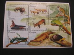 Gambia  1996 Wildliife Fauna  Sheetlet  SCOTT No.1741 I201807 - Gambia (1965-...)