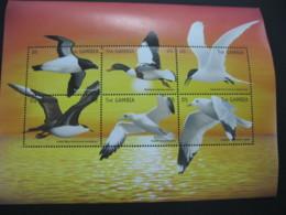 Gambia  1999   Sea Birds  Sheetlet  SCOTT No. 2135  I201807 - Gambia (1965-...)