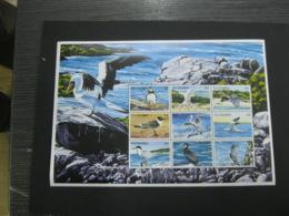 Gambia 1999 Sea Birds Sheetlet SCOTT No. 2133  I201807 - Gambia (1965-...)