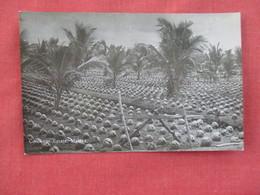 RPPC----Cocoanut Estate Malaya      Ref. 3079 - Malaysia