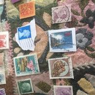 NUOVA ZELANDA PAESAGGIO COSTIERO - Stamps