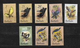 Barbados QEII 1979 Birds,, Small Selection To 70c MNH (7203) - Barbados (1966-...)
