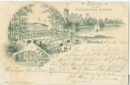 Düsseldorf 1895; Gruss Aus Dem Zoologischen Garten - Gelaufen. (J.P. Enners) - Duesseldorf