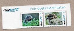 Nordbrief - Papageien - 2 W - Kea (Nestor Notabilis) - Perroquets & Tropicaux