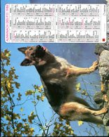 # - Almanach Des PTT 1986 - Editeur Oberthur - Intérieur Gironde - Calendars