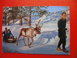 North-Norway.Lapps Taking A Sleigh Ride.Moose - Norway