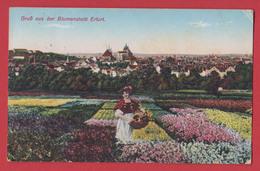 ERFURT : Gruss Aus Der Blumenstaat 2 Scans. - Erfurt