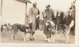 "Two Alaskan Huskies ""mixtures"" At Carcross, Yukon Territory 1935 6"" X 3.7"" 15 Cm X 9.4 Cm - Places"