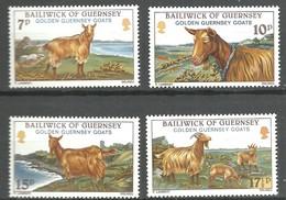 IVERT Nº204/7**1980 - Guernsey