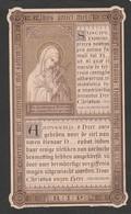 Dp Theodoor Hendrik Rombaut-broeder Damianus-sint-niklaas-brugge 1923-overste In Maldegem - Devotion Images