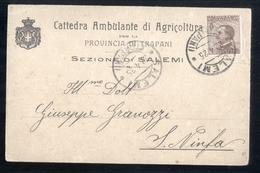 SALEMI - TRAPANI - 1925 - CATTEDRA AMBULANTE DI AGRICOLTURA - Vigne