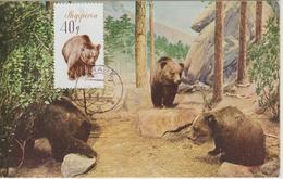 Albanie Carte Maximum Animaux 1965 Ours Bruns 838 - Albanie