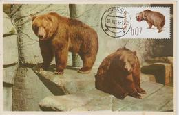 Albanie Carte Maximum Animaux 1965 Ours Bruns 841 - Albanie