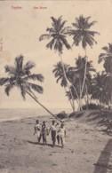 AO51 Ceylon, Sea Shore - Animated, Children - Sri Lanka (Ceylon)