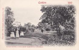 AO51 Ceylon Postcard, Road Scene, Cinnamon Gardens, Colombo - Vignette, UB - Sri Lanka (Ceylon)