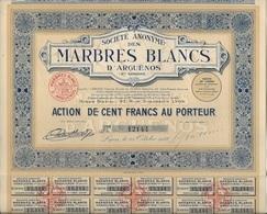 SOCIETE DES MARBRES BLANCS D'ARGUENOS -HTE GARONNE -ACTION DE 100 FRS -ANNEE 1928 - Mines