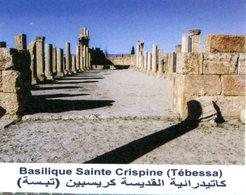 Musée De Timgad (Timgad - Algérie) - Tickets D'entrée