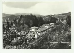 MONDONICO - PANORAMA - NV FG - Lecco