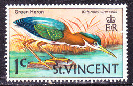 Uccello  St Vincent-Usato - Coucous, Touracos