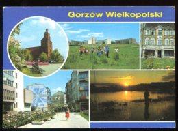 CPM Pologne GORZOW WIELKOPOLSKI  Multi Vues - Poland