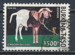 °°° BURKINA FASO - Y&T N°904 - 1994 °°° - Burkina Faso (1984-...)