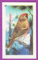 """Image Histoire Naturelle """" ENTREMETS FRANCORUSSE """" N° 504 Oiseau LE SIZERIN Pour L'Album N° 4 - Alte Papiere"""
