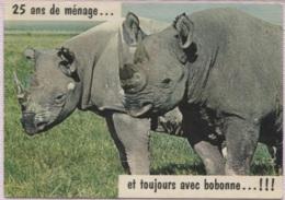 CPM - RHINOCEROS - Humour - Edition Artaud - Rhinocéros