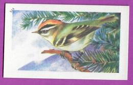 """Image Histoire Naturelle """" ENTREMETS FRANCORUSSE """" N° 514 Oiseau LE ROITELET TRIPLE BANDEAU Pour L'Album N° 4 - Alte Papiere"""