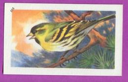 """Image Histoire Naturelle """" ENTREMETS FRANCORUSSE """" N° 515 Oiseau LE TARIN DES ALPES Pour L'Album N° 4 - Vecchi Documenti"""