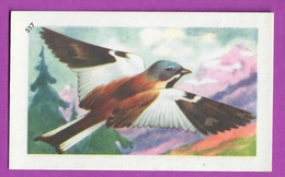 """Image Histoire Naturelle """" ENTREMETS FRANCORUSSE """" N° 517 Oiseau LE NIVEROLLE Pinson Des Neiges Pour L'Album N° 4 - Vecchi Documenti"""
