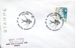 40118 Italia, Special  Postmark Verona 2000 Minerals And Fossil Exib. 2000  (fossil Fish- Fossiler Fisch) - Minerals