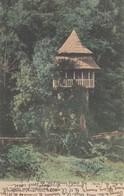 42 - Cadolon - Le Pavillon - Carte Colorisée - Autres Communes