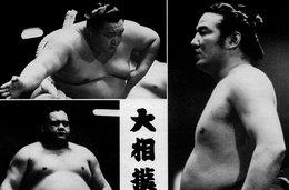 Sumo. CP. Sumo. Lucha Japonesa Hamada Sumo. 1983. Scan Du Verso. - Postcards