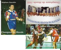 HANDBALL - EQUIPE DE FRANCE MASCULINE - CHAMPIONNE DU MONDE - 1995 - 3 CP - Handball