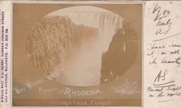 RHODESIA. VICTORIA FALLS, ZAMRESI.BAWAYO PICT. CIRCULEE 1910s A PORT ELIZABETH. 2 COLOR STAMP-UNIQUE-RARISIME- BLEUP - Zimbabwe