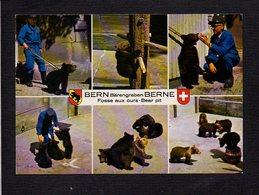 Suisse / Bern Bärengraben Berne / Fosse Aux Ours / ZOO - BE Berne