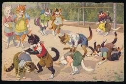 KAT - KATTEN - CAT - CATS - CHAT - CHATS - POESEN - POES - Katten