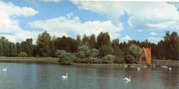 BOTANICAL GARDENS AU JARDIN DES PLANTES EN EL JARDIN BOTANICO RUSIA POSTAL COLOR -LILHU - Rusland
