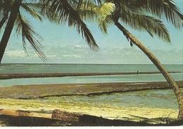 GUINEA ECUATORIAL.MARISMA Y PLAYA .CORISCO. - Guinea Ecuatorial