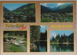 Morgins - Portes Du Soleil - VS Valais