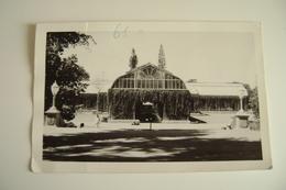 INDE BANGALORE LAL BAGH   Giardino Botanico A Bangalore   INDIA      VIAGGIATA  COME DA FOTO FORMATO PICCOLO - India