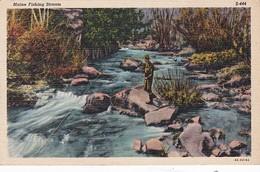 Maine Scene Along Fishing Stream Curteich - United States