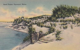 Maine Ogunquit Sand Dunes - United States