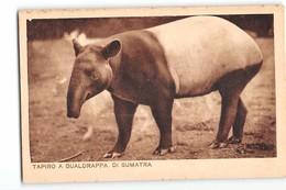 16853 TAPIRO A GUALDRAPPA DI SUMATRA - TAPIR - GIARDINO ZOOLOGICO DEL GOVERNATORATO DI ROMA - Animali